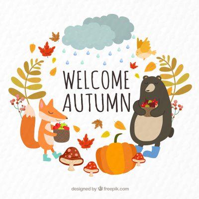 C'est l'automne! Vite une cure détox !